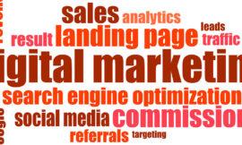 BOLOGNA | 08-15-22-29/10/19 | Web & Digital Marketing